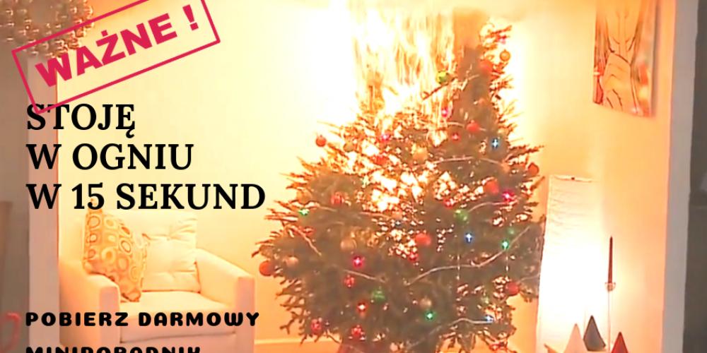 BEZPIECZNA CHOINKA, czyli zbliżają się święta Bożego Narodzenia